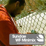 WF Minimix by Sundae