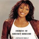NIGEL B (TRIBUTE TO WHITNEY HOUSTON CD)