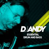 DJ ANDY - ESSENTIAL DRUM N BASS