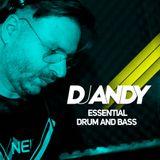 DJ ANDY - ESSENTIAL DRUM N BASS