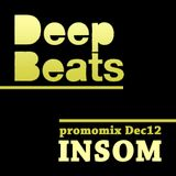 DeepBeats promomix Dec12 - INSOM