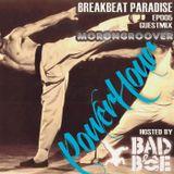 Breakbeat Paradise Recordings 30 Min Radio Special - Mixed by BadboE