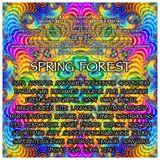Satori Panic @ Spring Forest (Dj Set)