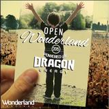 Ryan Selesnik - Open Wonderland
