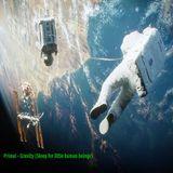 Primal - Gravity (Sleep for little human beings)