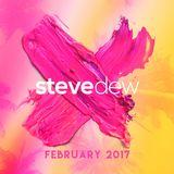 Steve Dew - February 2017
