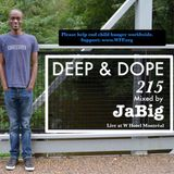 3-Hour Deep House Mix 2013 by JaBig (Jazz, Soulful, Lounge, South African Music) - DEEP & DOPE 215
