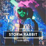 Rabbits in the Sand - Storm Edition - The Block Tel-Aviv 2017 - Asael Weiss