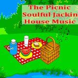 The Picnic Soulful Jackin House Music