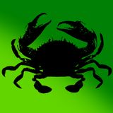 Go Go Battle Kitty vs Rasta Crab