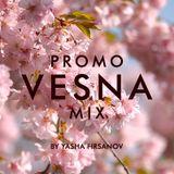 VESNA Promo Mix