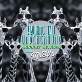 Walking Tall Underground Summer Sessions. With Mr H's 2017.