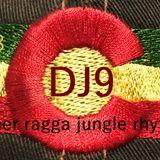 dj9 summer ragga jungle rhythms