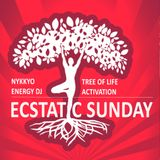 Ecstatic Sunday Utrecht December 2017 - Nykkyo Energy DJ
