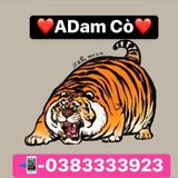 ADam Cò Mixtape - Thúy Ơi Em Đâu Rồi Thúy Ơiii....... #ADam Cò on Remix