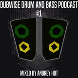 Dubwise Drum and Bass Podcast #1 mixed by Andrey HoT