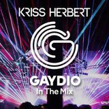 GAYDIO: InTheMIx 8th April
