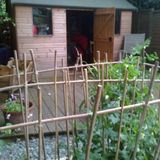 The Shed #156 (20.07.2014)