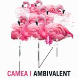Ambivalent @ Treehouse Miami (29-06-2012)