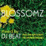 BLOSSOMZ - by DJ BEAT
