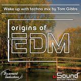 Basement Seduction // 029 // Origins of EDM by Tom Gibbs