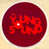 "Tribute to John De Witt's ""The Young Sound"" Volume 1 - Holiday"