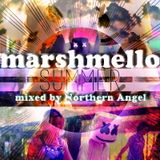 Marshmello - SuMmer (mixed by Northern Angel)