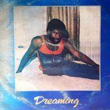 Disco Dreaming