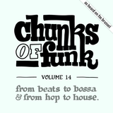 Chunks of Funk vol. 14: GoGo Penguin, STUFF., Lodger, Joker, Coco, Africa Hitech, Anderson .Paak, …