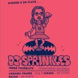 Yadava b2b Baloo @ Hidden - 21.01.17 (DJ Sprinkles Warmup)
