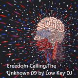 Freedom Calling The Unknown 09 by Low Key DJ
