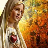 Aprendendo a amar com o Coração de Maria
