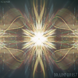 Brainfores7