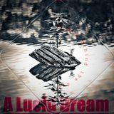 A Lucid Dream