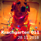 """Krachgarten Podcast 011: """"Das Ohr ist der Weg zum Herzen"""""""