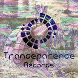 Tranceparence Records, Prana's choices vol 1;  Among the living----Psy prog full on-----130 -150 bpm