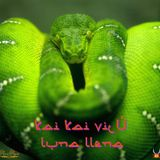 Kai Kai Vilú _ Luna Llena We Tripantu