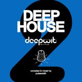 Deep House Label Showcase: DeepWit Recordings #2