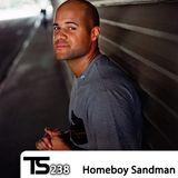 Tsugi Podcast 238 : Homeboy Sandman