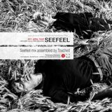 Seefeel mix assembled by Touched