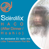 SolénoMix HACO (After Dinner/Hoahio) > Evala, David Soldier, Gallery Six, Fourcolor, Mika Vainio,...