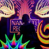 Holographic Mind (warm-up Namaste Records)