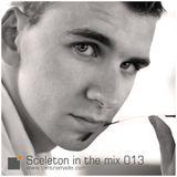 Sceleton in the mix 013