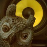 Tracy the NIGHT owl