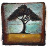 Zoon van snooK '(Falling from) The Nutty Tree' LP