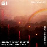 Perfect Sound Forever w/ Guy Blackman (Chapter Music) - 19th September 2019