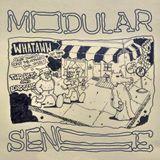 Modular Sense Vol. 2