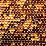 Honey Pot Melt Down 4