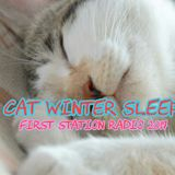 cat winter sleep @ first station