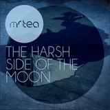 The Harsh Side Of The Moon
